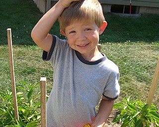 Braden Butler of Youngstown, age 3, is very proud of the peppers that he helped his parents to grow.  Parents Brian and Susan Butler.