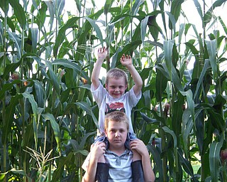 Andrew Brown age 12 and brother Nicholas Brown age 4 checking out their pop corn that they planted from seeds.