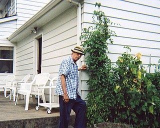 Robert Lysowski of Poland has cherry tomatoes growing next to his house. The garden wraps around most of his house.
