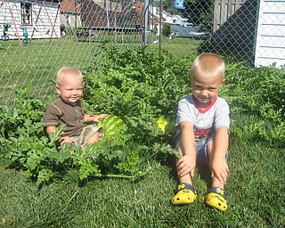 Charisse's sons Kaden & Keaton Mayhew play in their watermelon patch in the back yard. They're sons of Charisse Mayhew.