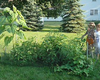 Janet and Roger Peskor sent in the photo of their 7-year-old son, Nicholas, who is very proud of his garden and scarecrow.