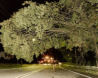 A storm damaged tree has a fifty-yard stretch of Churchill Road in Liberty blocked off.