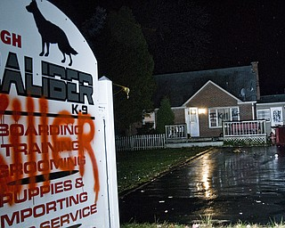Steven Croley's home on State Route 616 was vandalized following his arrest on Thursday, October 23, 2008 for several counts of animal cruelty. The festering carcasses of seven dead dogs were found in cages on the premises where Croley ran his business, High Caliber K-9.