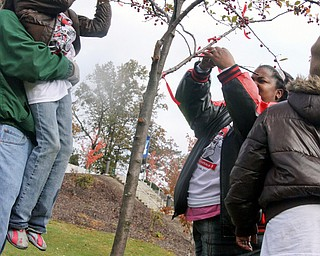L-R Volunteer Tim Grimmett of Cortland helps Chardonnay Borranuo (8) tie a red ribbon to the Tree of Remembrance for the ASAP race, Saturday October 25, 2008/ On the right is her mother Bessie Coker and sister, Zariah (10) who hang ribbons in remembrance of their loved one.
