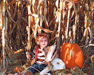 Carson Arforas, 18 months, enjoys a fall day with his pumpkins. He's the son of John and Lori Arfaras of Canfield.