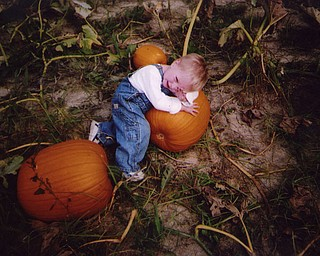 Logan Sebastian, 2 1/2, rests on his pick of pumpkins. The photo was sent in by his grandmother, Denise Sebastian of Canfield.