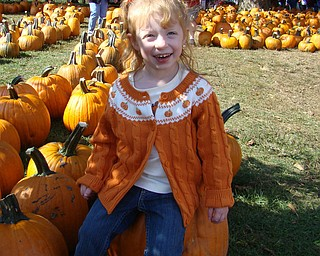 Sydney Henderson, 3, daughter of Todd and Jacey Henderson of Poland, enjoys an outing to Whitehouse Farms.