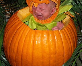 Zachary Schimpf, 4 weeks, seems a little perturbed with his role as Halloween ornament. His mom, Tammy Schimpf, a former Youngstowner now in Akron, wanted friends and family to enjoy the moment.