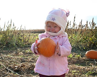 Jaime Jean Hoefert, 19 months, loves pumpkins and gourds. She had a blast picking them out of the  pumpkin patch at Detwiler farms, said her mother, Sarah, of North Lima.