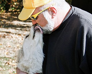 Marc DeBolt of Newton Falls shares a tender moment with Shadow his Arctic Wolf in the backyard of his Newton Falls home.