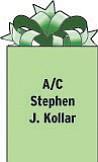 A/C Stephen J. Kollar 353 MXS PSC 80 Box 17294 APO AP 96367 Son of Jaki and Steve Kollar of Columbiana and grandson of Peg Kollar of Struthers.