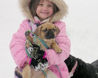 ,Taylor Aquisto, 6, of Boardman gives new puppy, Rufis, her first experience with snow.