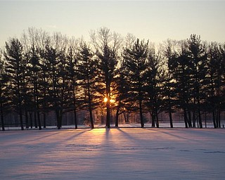 Sandy Terlecki and her dogs enjoyed this sunrise on a crisp morning Jan. 15 in Austintown Township Park.