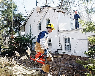 Workers from Stride Tree Service remove a large Maple tree from a house on Lee Run in Poland Wed. High winds felled the tree about 4:45 am. The owners Dick and Sharon Wade were home at the time but were not injured.