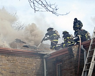 Youngstown Firefighters  Capt Jack Rider Lt Mark Farragher  Terrne Gambel and Rob Glass work to contain the fire at Gypsy and Coronado work on an attic fire - unknown amount of damage.