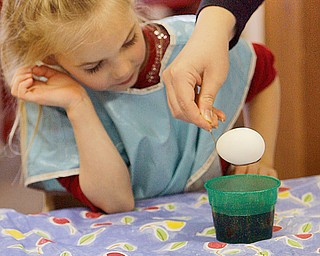 WHITE OUT: Cianna Crawford watches as her egg dips down into the color fluid with the help of a teacher - as  Preschoolers decorate Easter Eggs at   New Life Christian Preschool, 2250 E. Western Reserve Road Poland.