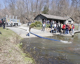 Ohio Division of Wildlife releases 2500 Rainbow trout into Lake Glacier Thursday, April 9, 2009. Spectators and fisherman gather.