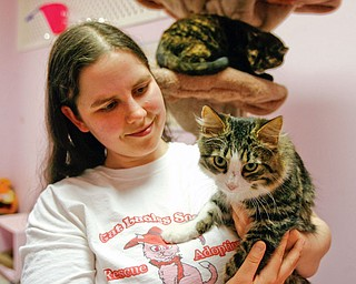 Maria Guyan, Cat Ladies Society director, is seen here with Charley, one of the rescued cats. He's one of 15 cats that was rescuede.
