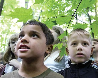 Poland Union School Kindergarten students Justice Garcia, left, and Sam James, right, during dedication of Wild School site at their school Tuesday.