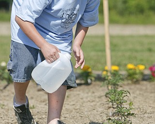 Watering by hand is Parker Swank 11,  as the Jackson- Milton Craig beach - JJC Youth Program Summer Day Camp that opened today in North Jackson - robertkyosay