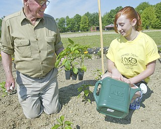 Learning about the pepper plants  from master gardener Melvin Megowan - of Austintown - Tori Wolfe 13 - as the Jackson- Milton Craig beach - JJC Youth Program Summer Day Camp that opened today in North Jackson - robertkyosay.