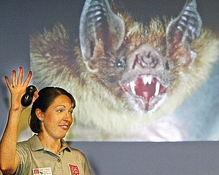 Marne Titchenell, OSU Extension Wildlife Specialist, leads a program about bats Tuesday at the Trumbull Agriculture and Family Center in Cortland. A projected image of a bat is behind her.