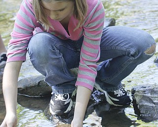Jessica Travis (11) of Girard scoops up a crayfish during summer day camp in Churchill Park in Liberty run by Rose Buhley, Monday June 29, 2009Lisa-Ann Ishihara