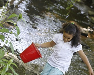 Fatima Elouaddi (7) of Liberty walks in the creek to find crayfish at summer day camp in Churchill Park in Liberty run by Rose Buhley, Monday June 29, 2009Lisa-Ann Ishihara
