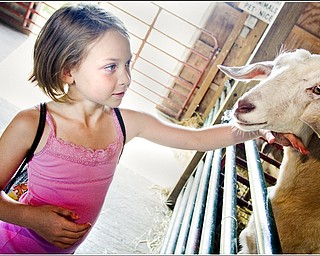 7.5.2009 Lauren Akuszewski, age 8 of Austintown, pets a goat at Mill Creek MetroParks' Farm in Canfield on Sunday afternoon. Geoffrey Hauschild