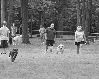 A BARK IN THE PARK: Dogs and their owners stroll through Cooperation Station Dog Park at Mosquito Lake State Park. The park had its grand opening Friday, giving dogs and their owners a fenced-in area between the road and the lake.