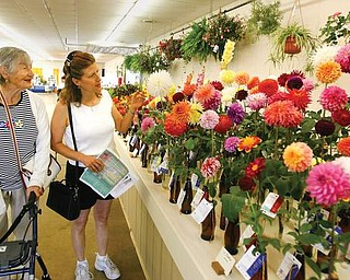 The Vindicator/Robert K. Yosay -----PRETTY IS AS PRETTY DOES - Mitzi Germanwich of Struthers enjoys the floral display with her daughter of Calif. ( formerly of Struthers )  Mary Duch- they have a flower garden and enjoys the color every year 