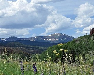 Dan Shields of Canfield vacationed at Flat Tops in Yampa, Colo., while visiting national forests and parks.