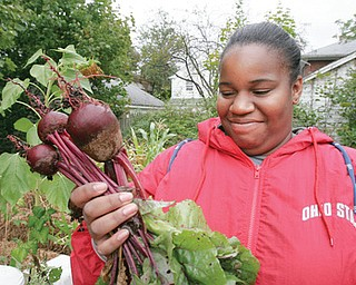CAN'T BEET IT: LaToya Hixon, 19, of Youngstown, a member of the Flying High youth organization, checks out beets grown in an East Avondale Avenue garden created by the nonprofit groups Goodness Grows and Flying High.