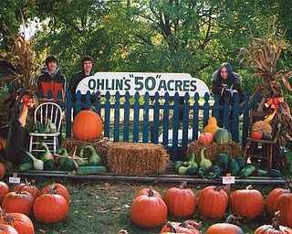 Cassondra and Jonathan Ohlin of North Lima 'chill  out with their cousin, Ryan Ohlin of New Middletown, among their pumpkin display on Middletown Road.