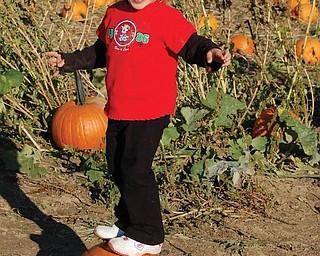 Lindsay Jones, 3, 'surfs  this pumpkin at Detwiler Farm last October.
