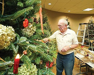 NATURAL TREE: Bill Slabe places natural ornaments on a tree for the Men's Garden Club of Youngstown. Only home-grown items were used as decorations for the tree, which was one of 40 to be displayed at the visitor center at Fellows Riverside Gardens in Mill Creek Park.