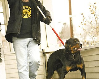 UNDER CONTROL: Detective Sgt. Mike Lambert of the Youngstown Police Department removes a Rottweiler dog from a Donald Avenue home on the city's West Side. Police suspect the dog attacked a 10-year-old boy Tuesday. Lambert removed the animal Wednesday afternoon.