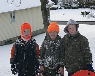 From left, Cameron Hevener of Austintown, Nathaniel Smith of Mineral Ridge and Nathan Hevener of Austintown..