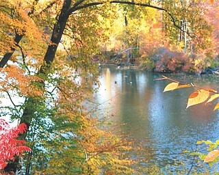 Mill Creek Park in the fall by Brenda Kiddon of Poland.