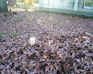 Up to her neck in leaves is Madalyn Smith, 6, of Boardman..