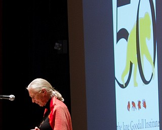 """Geoffrey Hauschild