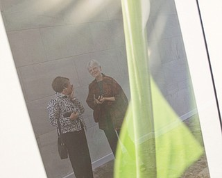 "LISA-ANN ISHIHARA | THE VINDICATOR ..L-R Jennifer Johnston of Kent and her former college roommate and good friend, Maureen Cole of Kent are reflected in ""Peace"" a photograph from Michael Cole's exhibit ""Outside/In: Photographs"" at The Butler Institute of American Art, Sunday, May 2, 2010"