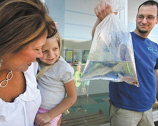 Ava Sabrin, 4, held by her mother, Tammy, watches as Louis Buchmann of PondScape shows her a butterfly coy to be released into the pond at Poland North Elementary School. Tammy Sabrin is president of the school's PTO.