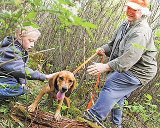 "Devon Williams, 10, of Hubbard pets Black Betty, a beagle, as Monica Bassett holds the leash. They're in a three-acre fenced ""puppy pen,"" where young dogs can safely learn to trail rabbits and youths can learn how to handle their dogs."