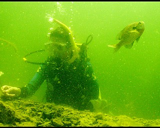 Geoffrey Hauschild|The VIndicator.Aimee Campbell, of Union Twp., in Fox Quarry a lake created from an old limestone quarry B&B Diving in Hillsville PA.