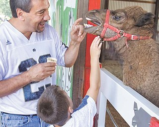 Danny Guido of Leetonia and his son, Joseph, 5, hang out with Bubbie the camel, who was born in early March and now resides at Wagon Trails Animal Park in Vienna.