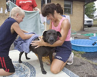 LISA-ANN ISHIHARA | THE VINDICATOR..Co-Founders of W.A.G.S. Canine Rescue, Mary Jo Nagy of Youngstown and boy scout Tyler Bartell, 12, of Youngstown, dry off 7 year old weimaraner/shar pei mix Hannah, outside of Happy Paws Spa & Day Care for a wellness clinic. Tyler is in boy scout troop #22 and is trying to earn his pets merit badge; which he earns by volunteering and helping animals.