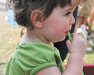 Brienna Kollar, 1 1/2, of Hudson, Ohio, steals a sip of lemonade at the 2009 Canfield Fair. The photo was submitted by her grandmother, Elaine Kollar of Lowellville. .