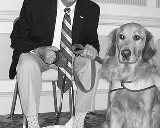 """At a recent meeting of Youngstown Rotary Club, Irwin Stovroff spoke of a new program, """"Veterans Helping Heroes,"""" and introduced two of the dogs involved in the program, at left, Jenny, a therapy dog, and Cash, a service dog. Stovroff, a World War II Prisoner of War and recipient of the Distinguished Flying Cross, and his partner, Jerry Kramer, established the Florida-based program to aid veterans who have been severely wounded in the global war on terrorism. The program provides assistance dogs that have been especially trained to give veterans mobility, independence and companionship. For more information on the program, visit www.VetsHelpingHeroes.org."""