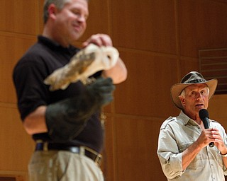 Geoffrey Hauschild|The Vindicator.A Barn Owl is brought on stage during a performance by the Youngstown Symphony in conjunction with Jack Hanna at the DeYor performing Arts Center on Sunday afternoon.